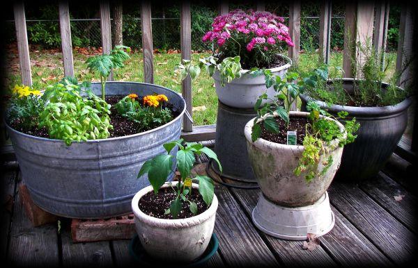veggie-containers-09